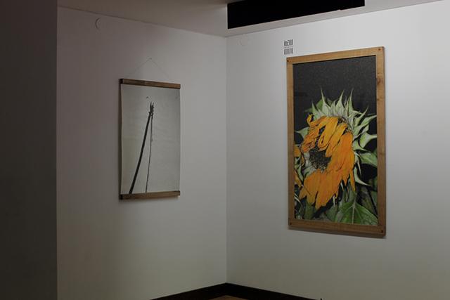 Janek Zamoyski_Czulosc_exhibition view (2)