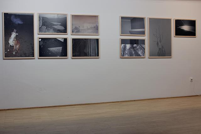 Janek Zamoyski_Czulosc_exhibition view (6)